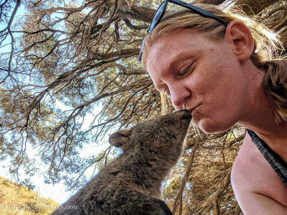 Amy getting a kiss from a quokka!