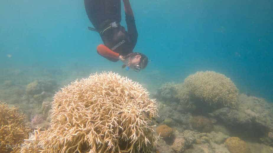 Amy snorkeling upside down with a big coral head in Butterfly Bay.